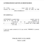 Carta autorizacion para viajar